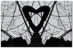 starogradsko_srce